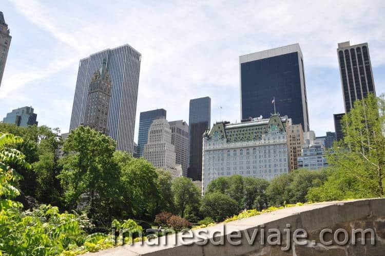 mejores planes que debes hacer en Nueva York Central Park