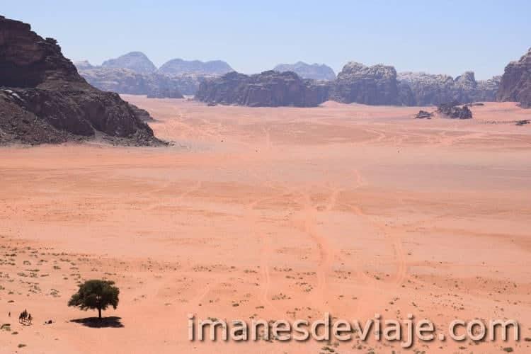 Desierto Wadi Rum Jordania 14
