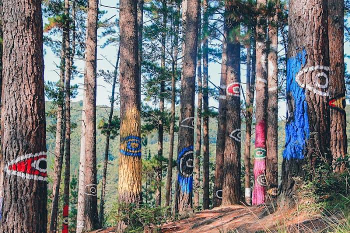 que ver en el pais vasco bosque de oma